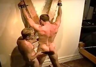 giant bodybuilders muscle gazoo acquires an gazoo