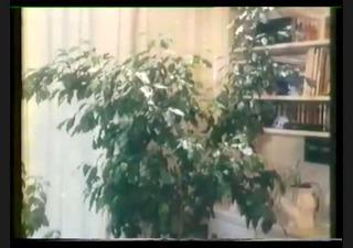 perverse fanny (9995) full vintage video